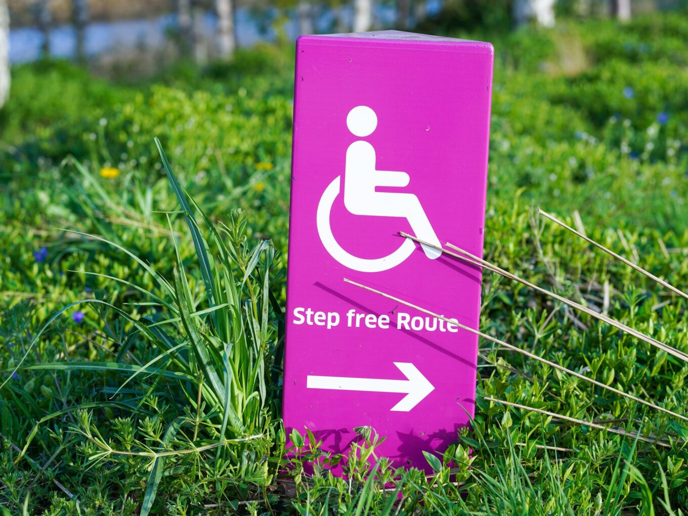 How to File a Long Term Disability Claim
